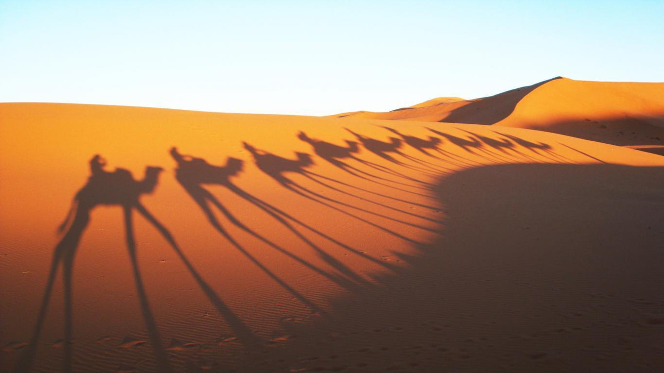 The Sahara Desert Wordgasm